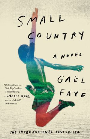 Small Country: A Novel
