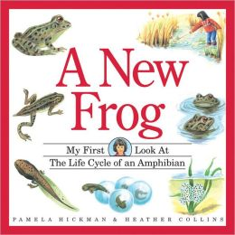 A New Frog: The Life Cycle of an Amphibian