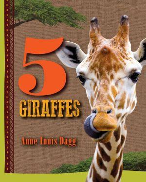 5 Giraffes