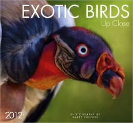 2012 Exotic Birds - Up Close Wall Calendar