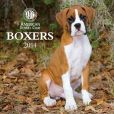 Book Cover Image. Title: 2014 AKC Boxers Wall Calendar, Author: American Kennel Club