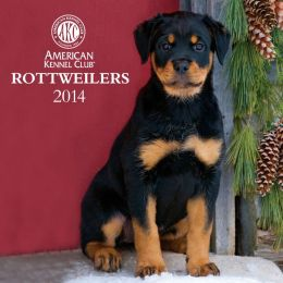 2014 AKC Rottweilers Wall Calendar