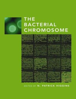 The Bacterial Chromosome