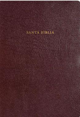 RVR 1960 Biblia de Estudio Arco Iris, borgona piel fabricada con indice