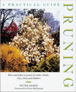 Pruning: A Practical Guide