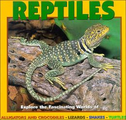 Reptiles: Explore the Fascinating Worlds of...Alligators And Crocodiles-Lizards-Snakes-Turtles