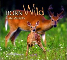 Born Wild in the Smokies