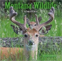 2012 Montana Wildlife Wall Calendar