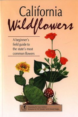 California Wildflowers: A Beginner's Field Guide to the State's Most Common Flowers