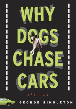 Why Dogs Chase Cars: Tales of a Beleagured Boyhood