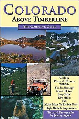 Colorado Above Treeline: The Complete Guide