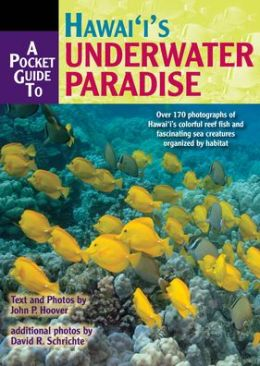 A Pocket Guide to Hawaii's Underwater Paradise