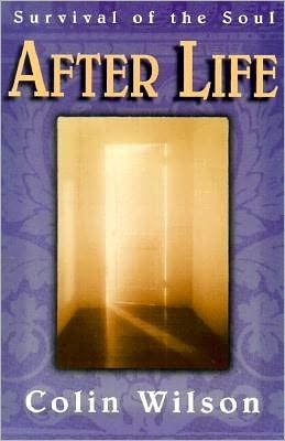 After Life: Survival of the Soul