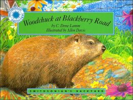 Woodchuck at Blackberry Road (Smithsonian's Backyard Series)
