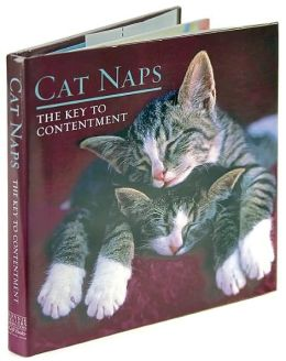 Cat Naps: The Key to Contentment