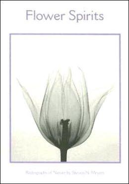 Flower Spirits Notecards