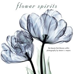 Flower Spirits: The Beauty That Blooms Within