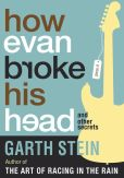 Book Cover Image. Title: How Evan Broke His Head and Other Secrets, Author: Garth Stein