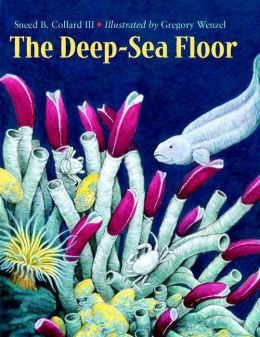 The Deep-Sea Floor