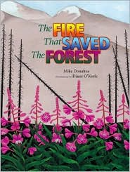 Fire That Saved the Forest