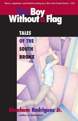 Boy without a Flag: Tales of the South Bronx