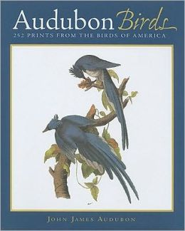 Audubon Birds: 252 Prints from the Birds of America
