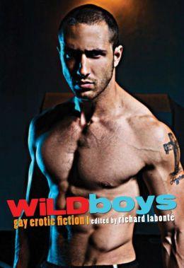Wild Boys: Gay Erotic Fiction