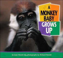 A Monkey Baby Grows Up (Baby Animals Series)