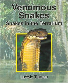 Venomous Snakes: Snakes in the Terrarium