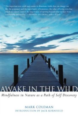 Awake in the Wild: Mindfulness in Nature as a Path of Self-Discovery