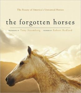 The Forgotten Horses: The Beauty of America's Unwanted Horses