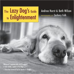 Lazy Dog's Guide to Enlightenment