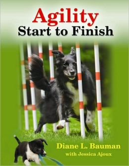 Agility: From Start to Finish