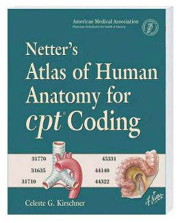 Netter Atlas Of Human Anatomy 6th Edition Free Download