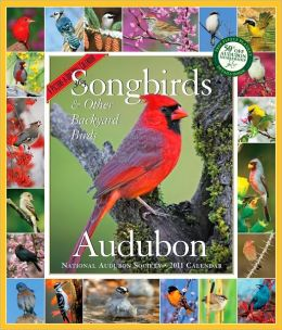 2011 Audubon 365 Songbirds Picture-A-Day Wall Calendar
