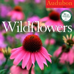 2014 Audubon Wildflowers Wall Calendar