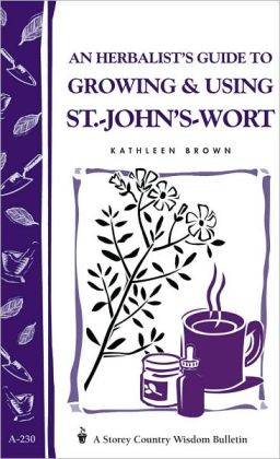 An Herbalist's Guide to Growing and Using St. -John's-Wort
