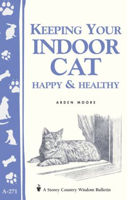 Keeping Your Indoor Cat Happy and Healthy