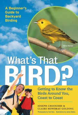 What's That Bird?: Getting to Know the Birds Around You
