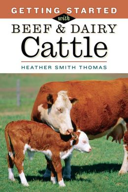 Getting Started with Beef and Dairy Cattle