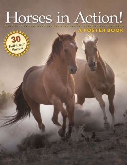 Horses in Action: A Poster Book