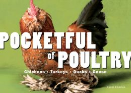 Pocketful of Poultry: Chickens, Turkeys, Ducks, Geese