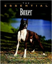 The Essential Boxer
