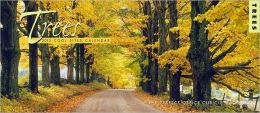 2013 Trees Cool Sites Wall Calendar