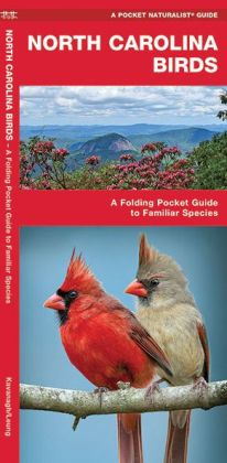 North Carolina Birds: An Introduction to Familiar Species