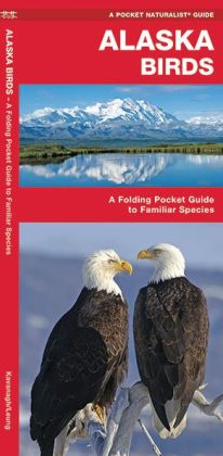 Pocket Naturalist Guide to Alaska Birds: An Introduction to Familiar Species