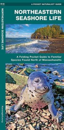 Northeastern Seashore Life: An Introduction to Familiar Coastal Species North of Massachusetts (Pocket Naturalist Series)