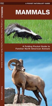 Mammals: An Introduction to Familiar North American Species