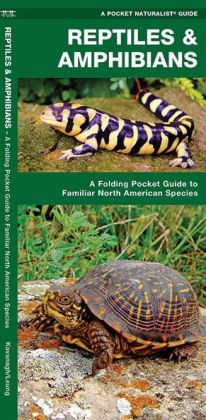 Reptiles and Amphibians: An Introduction to Familiar North American Species