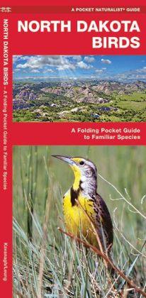North Dakota Birds: An Introduction to Familiar Species